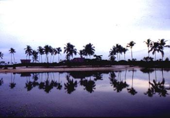 Brazil Bahia landscape