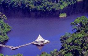 The Amazon river near Manaus, Brazil